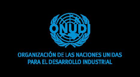 ONUDI UNITED NATIONS